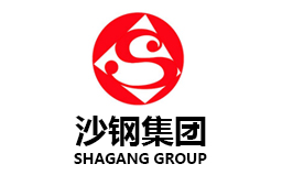 Shagang group